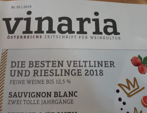 Vinaria Best Buy!